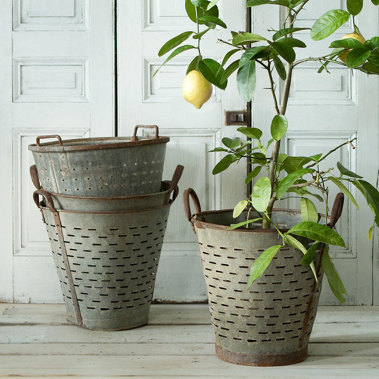 Terrain Vintage Olive Basket