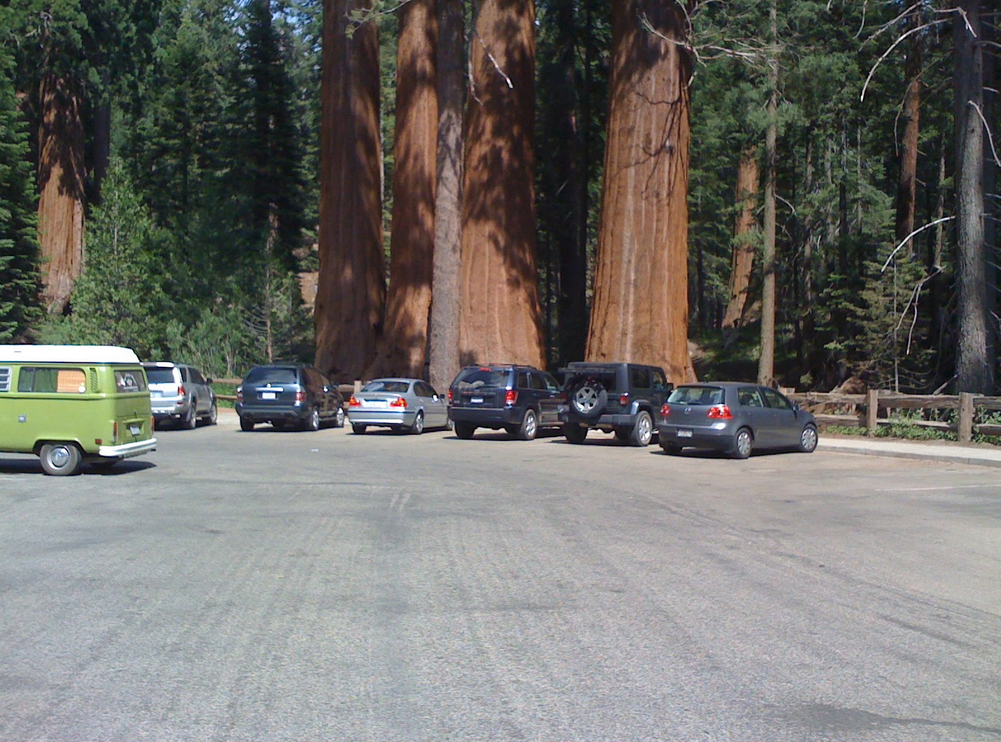 If you want to see the giant sequoias, they've paved parking spots right onto the roots. Good job, Parks Service.
