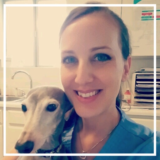 Emily- Veterinary Assistant - Pictured with Vito