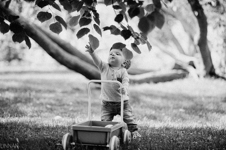 lapsikuvaus ainolan puisto 10.jpg