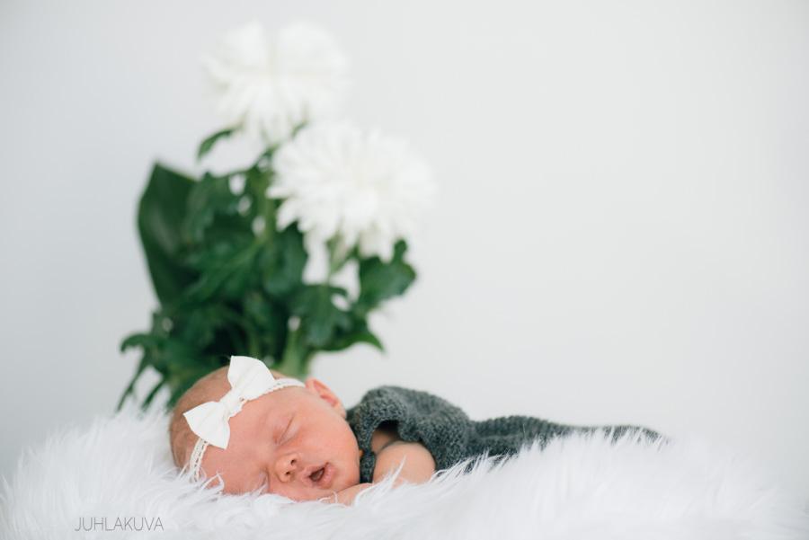 newborn valokuvaus-5.jpg