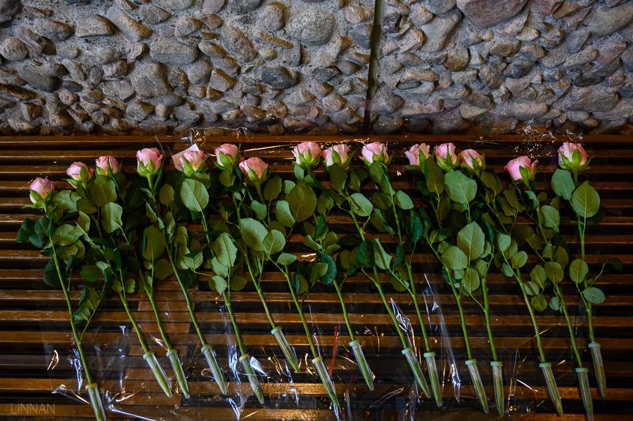 hautajaiskuvaus-linnan-juhlakuva-1.jpg