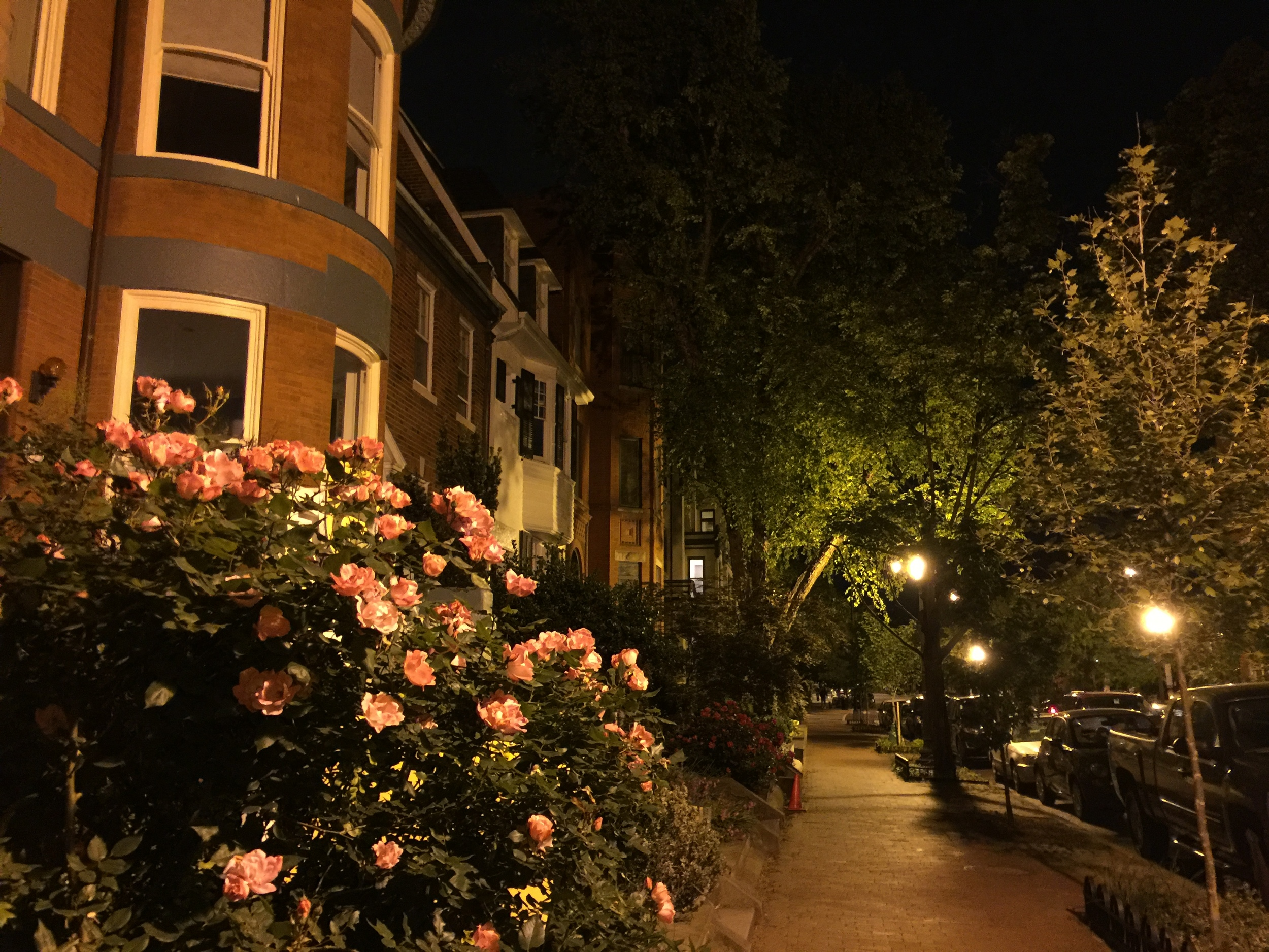 Dupont Circle neighborhood