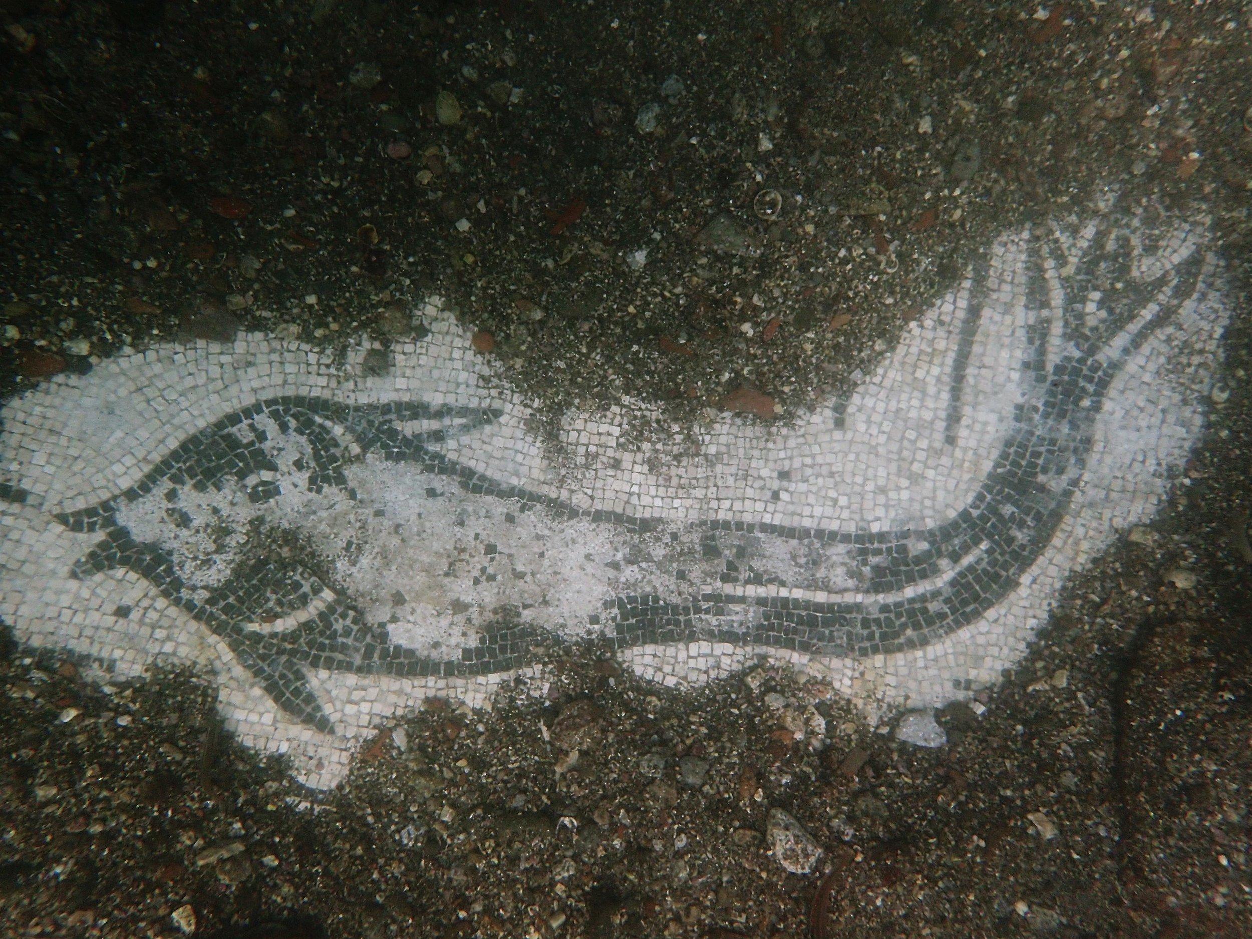 *NEW   *  Baia Underwater Archeological Park - July 9, 2019