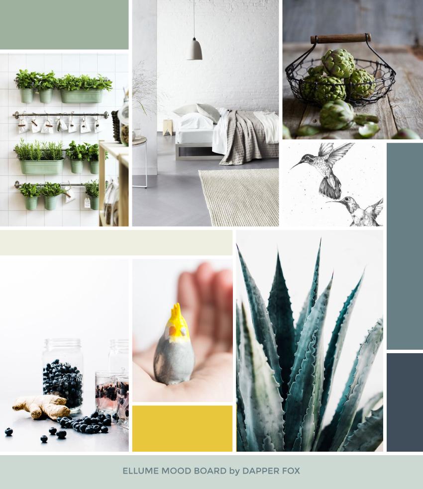 Ellume Eco Friendly Mood Board Design by Dapper Fox Design #minimal #modernlogo #bird #logo #watercolorlogo #anthropologic  #artlogo #logodesign #moodboard #yellow #blue #fresh
