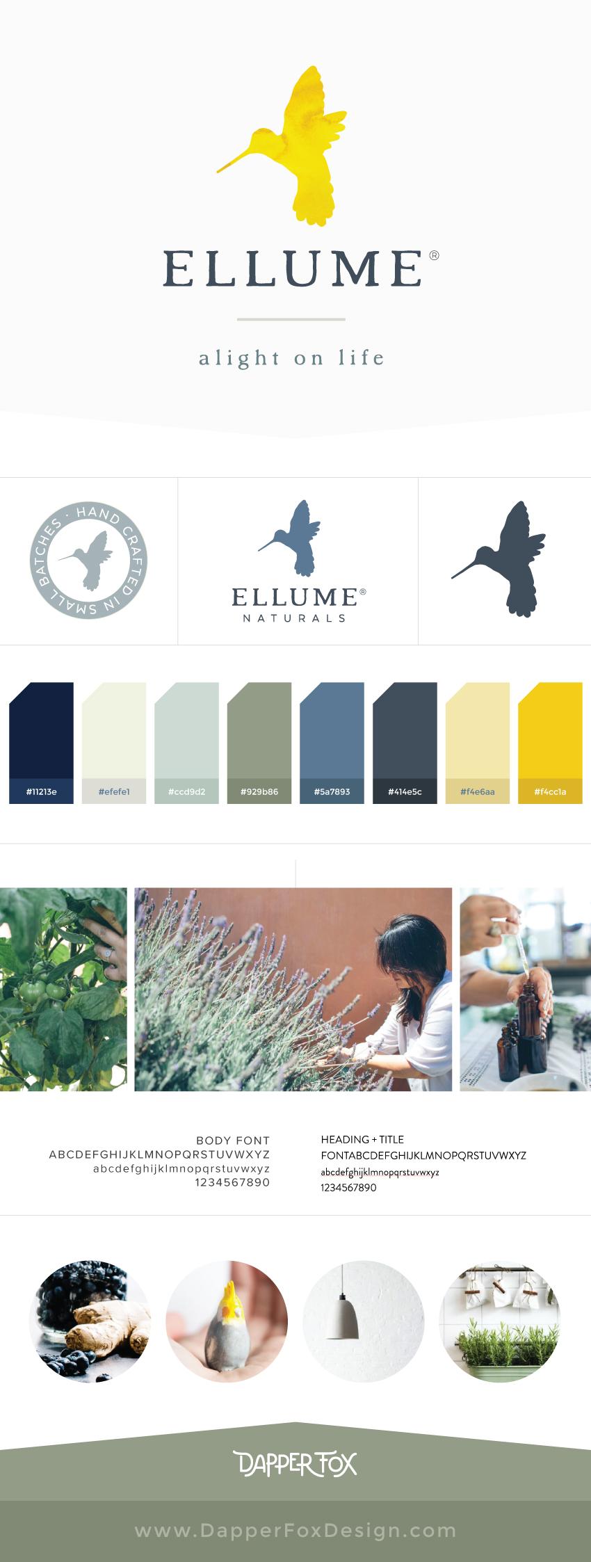 Ellume Eco Friendly Logo Design and Brand Board by Dapper Fox Design #minimal #modernlogo #bird #logo #watercolorlogo #anthropologic  #artlogo #logodesign #moodboard #yellow #blue #fresh
