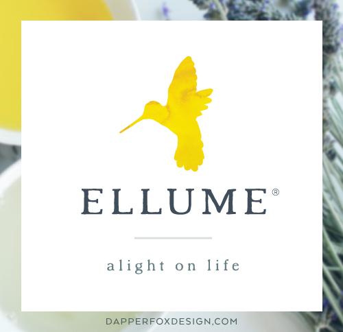 Ellume Eco Friendly Logo Design by Dapper Fox Design #minimal #modernlogo #bird #logo #watercolorlogo #anthropologic #artlogo #logodesign