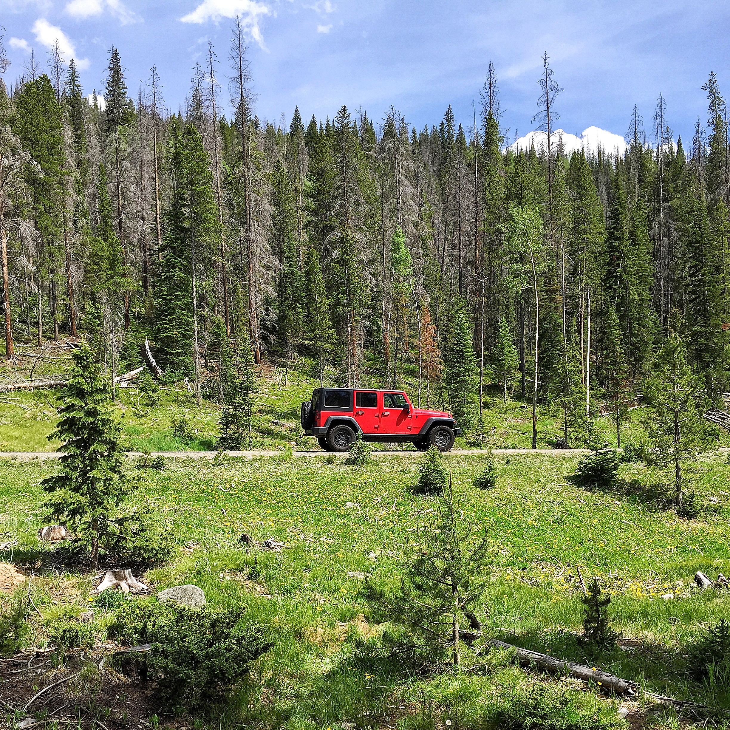 red jeep thisworldexists this world exists rocky mountain national park trail ridge road