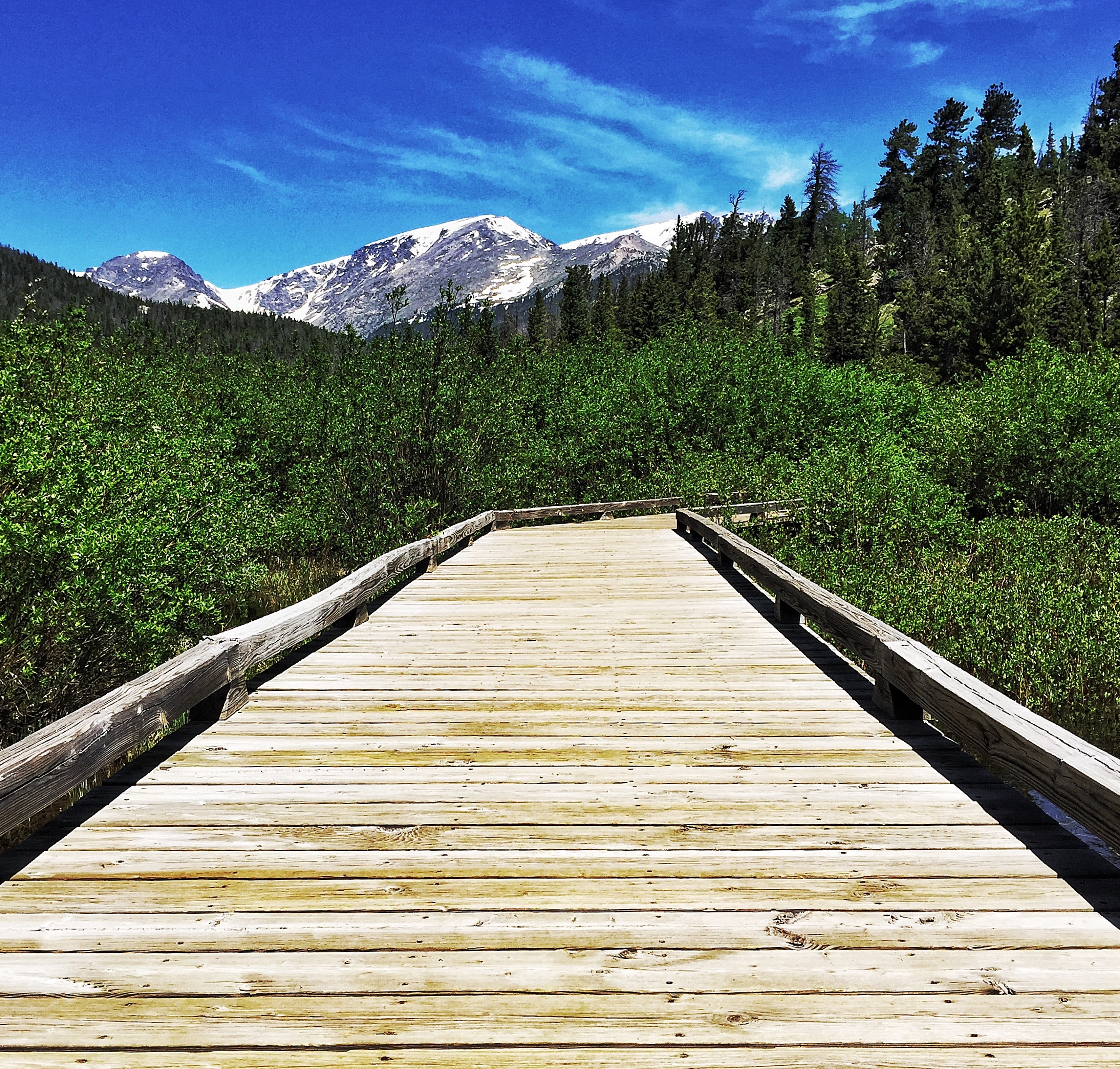 rocky mountain national park colorado trail ridge road thisworldexists this world exists