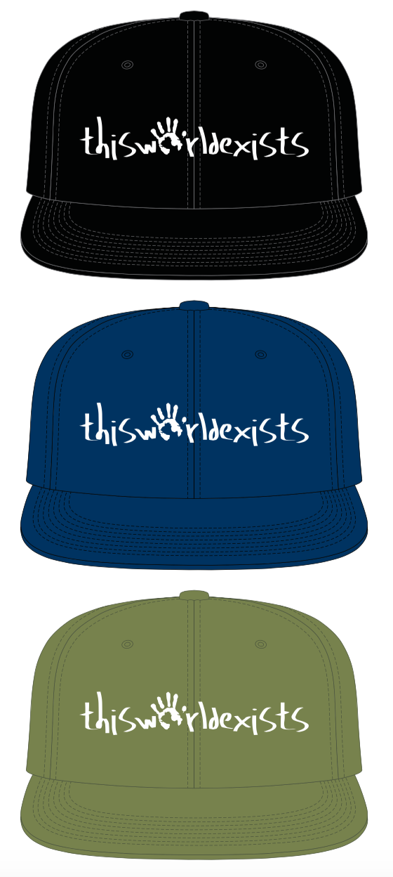 thisworldexists this world exists hats
