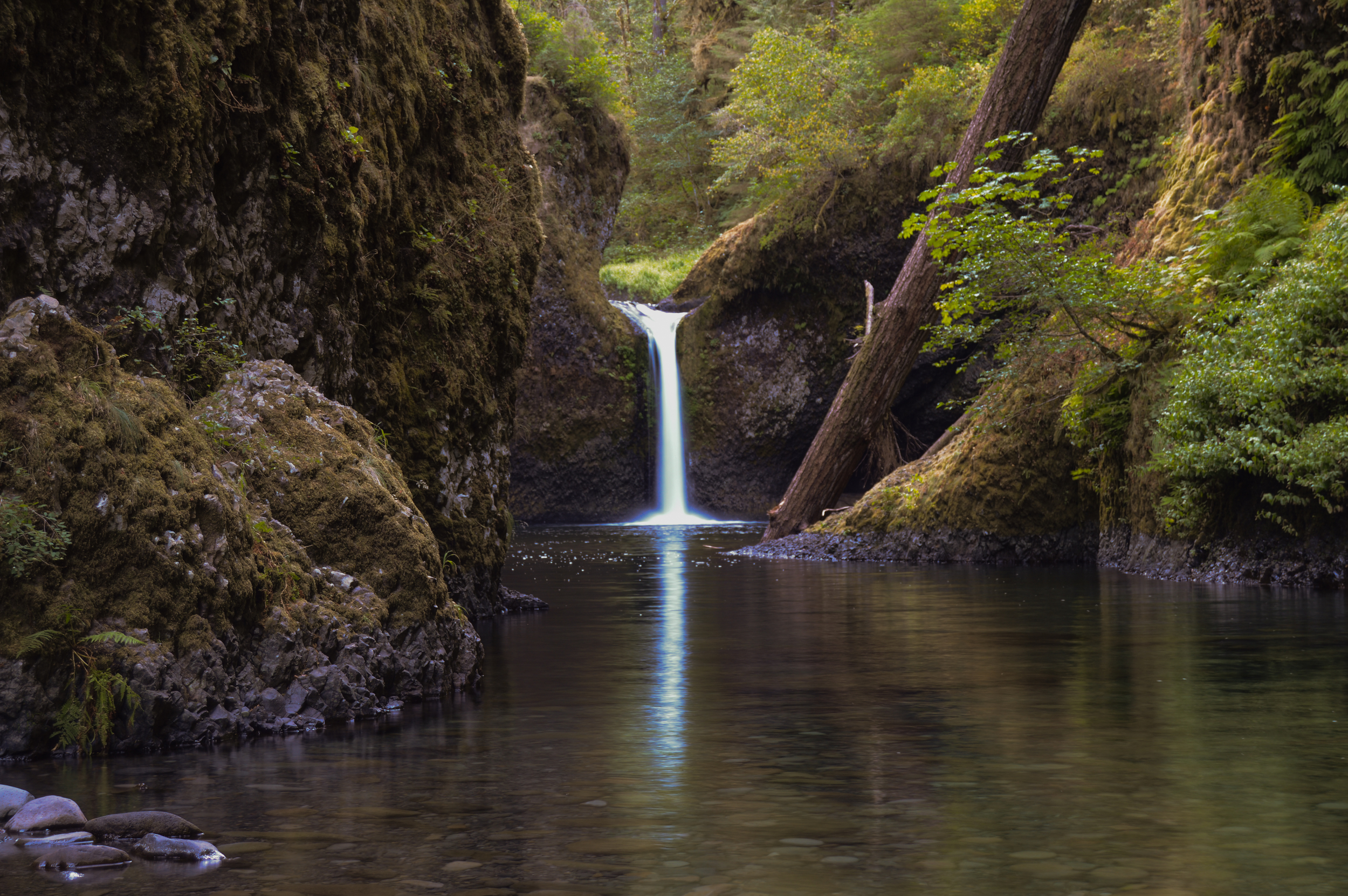 Oregon waterfall thisworldexists this world exists