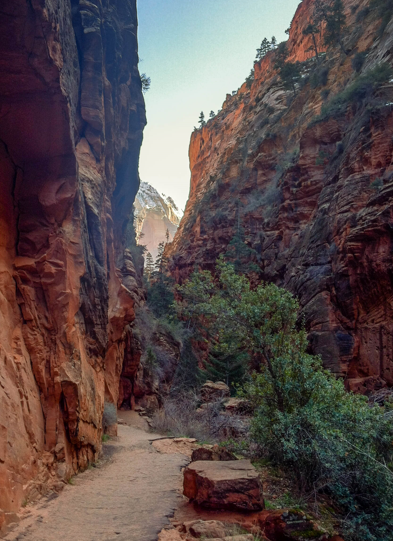 zion thisworldexists angels landing hike