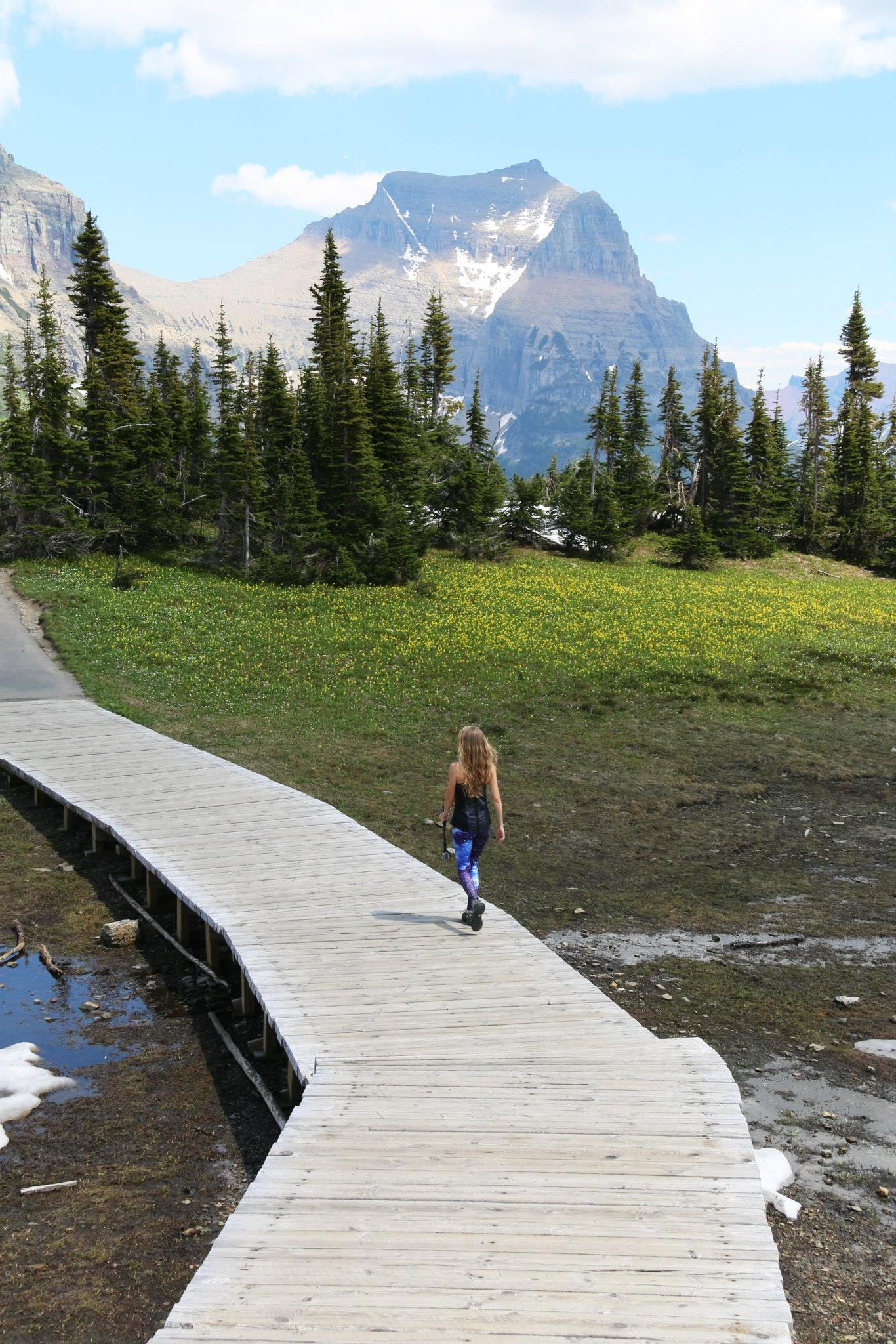 glacier national park montana mountains hike logan pass trails