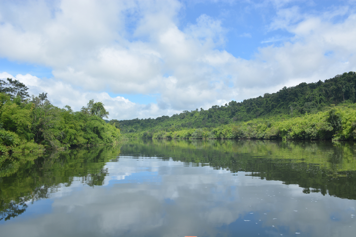 Cardamom Mountains thisworldexists cambodia this world exists tatai river waterfall