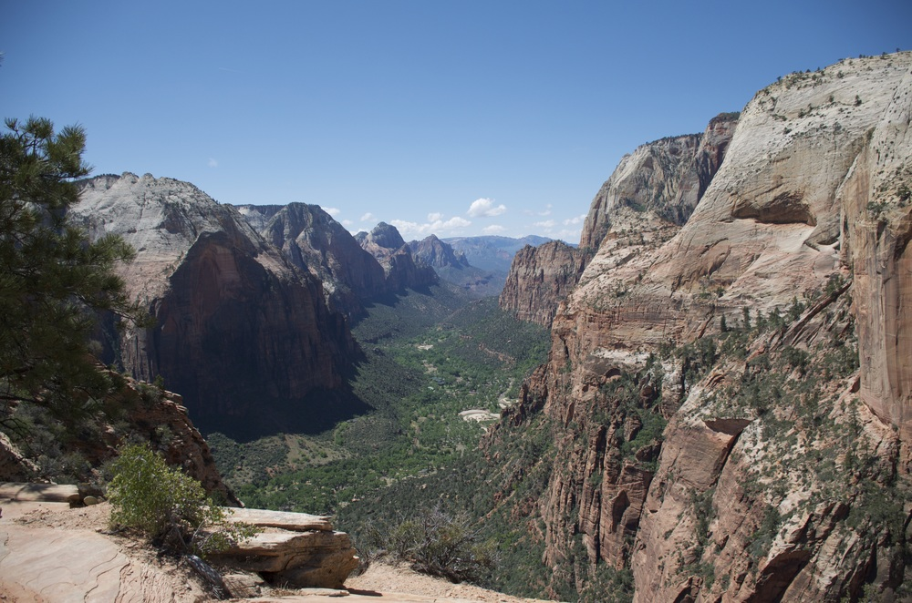 Angel's Landing. Photo by Kasey Crook.  Instagram: @kaseylynn00