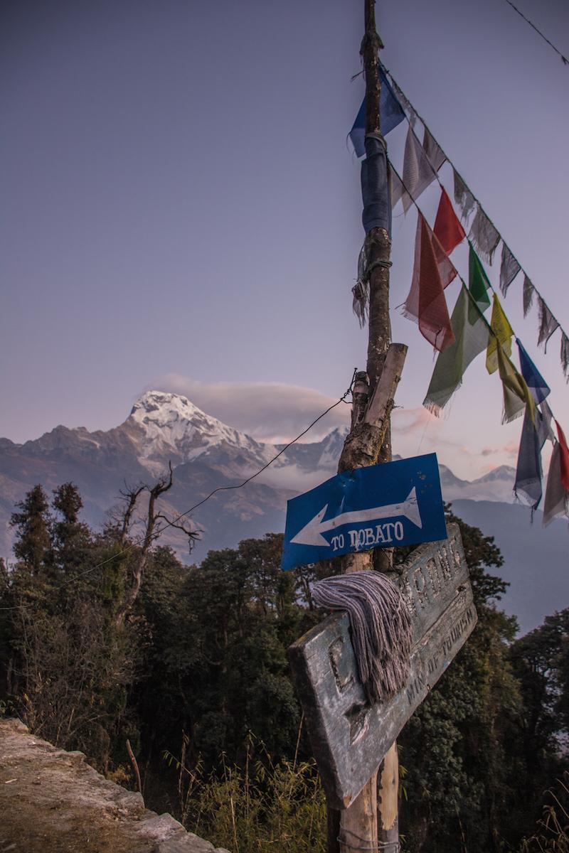 nepal himalaya prayer flags thisworldexists this world exists annapurna himalaya