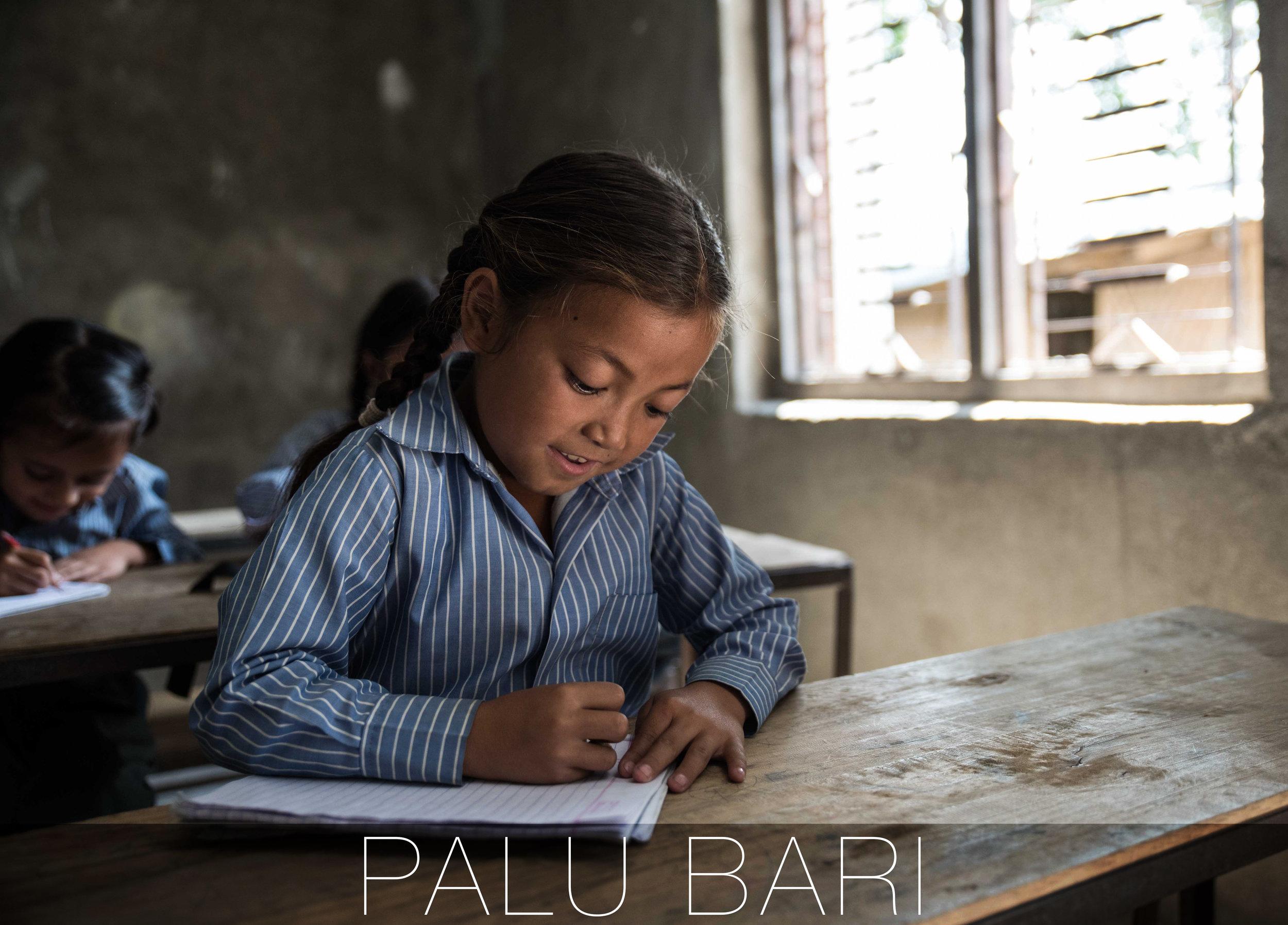 Palu Bari THISWORLDEXISTS education volunteer Nepal