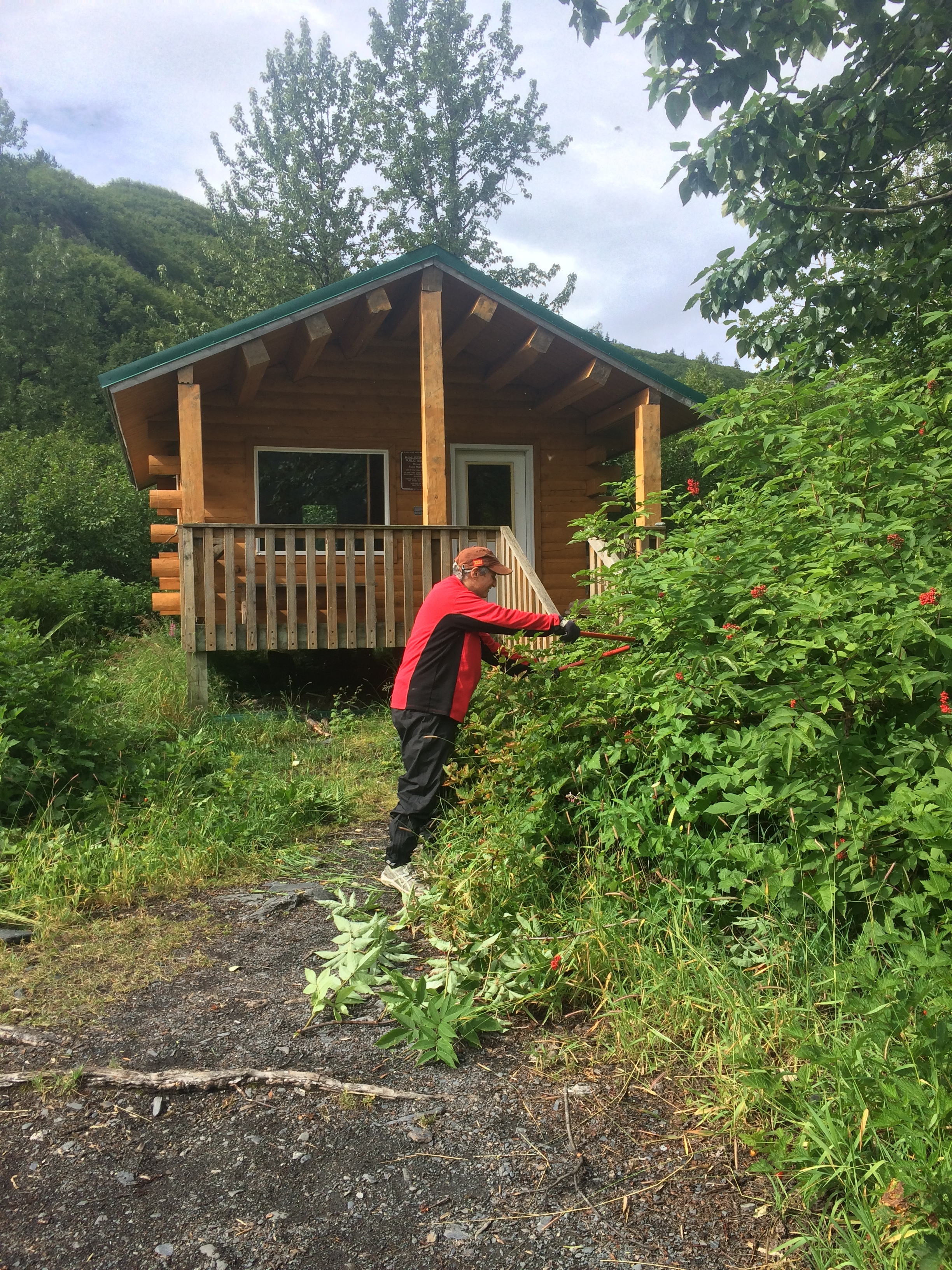 Brush trimming is part of the job for Levitation 49 summer paid and volunteer trail and grounds crews. The organization is also looking to hire a campground host for Blueberry Campground and water taxi boat captains to take guests to and from Shoup Bay public use cabins.