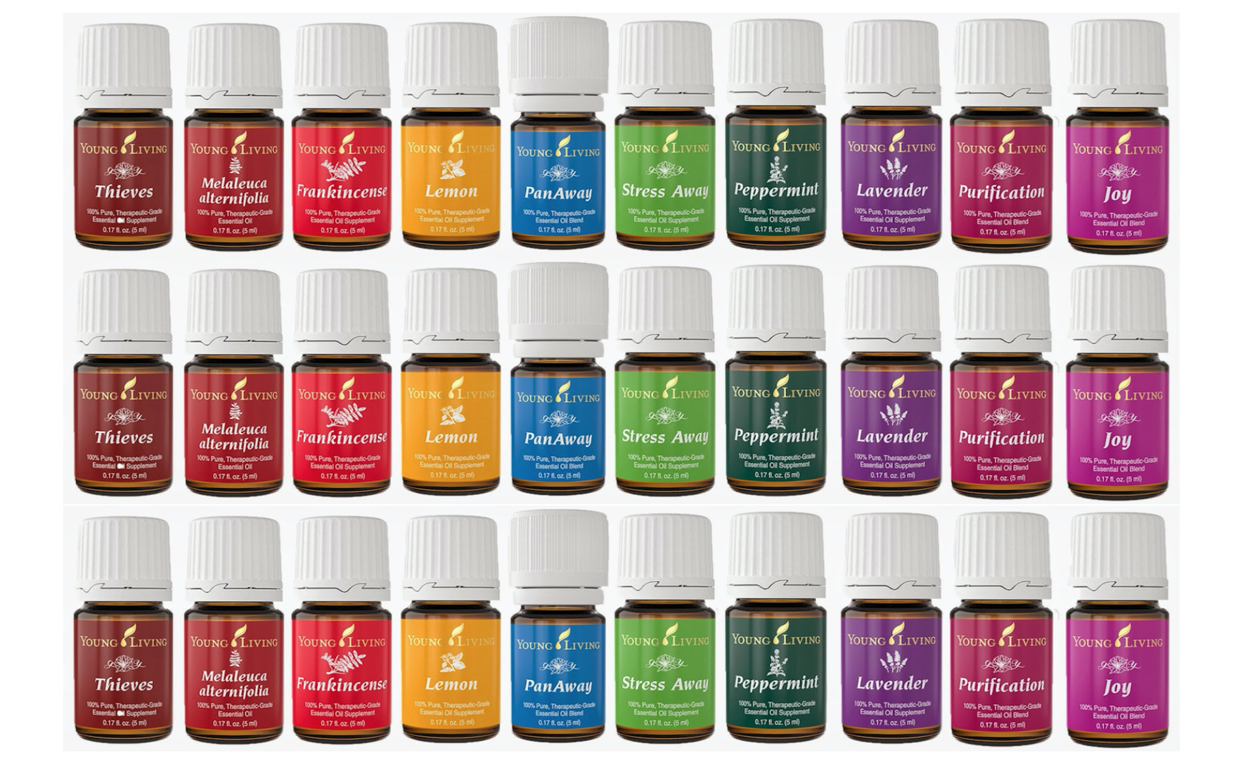 Image result for youngliving