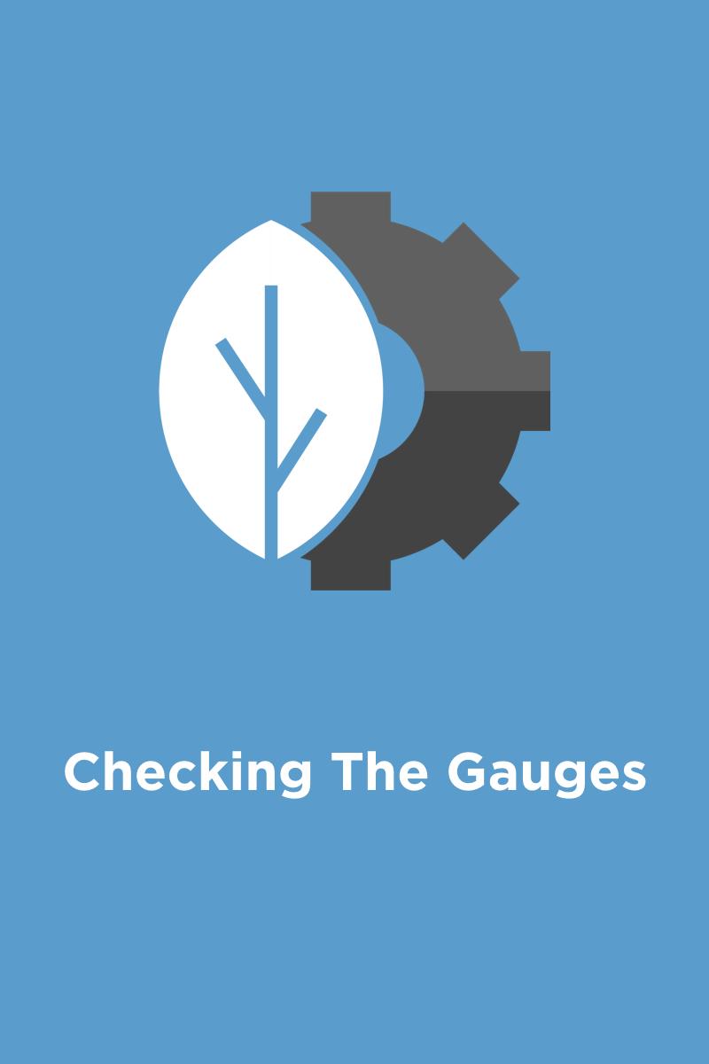 Thumbnail - Checking The Gauges.001.jpeg