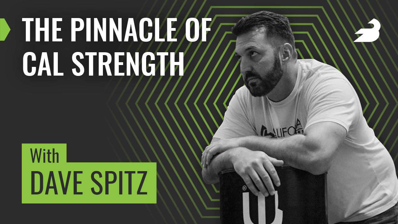 Barbend Podcast Episode with dave Spitz