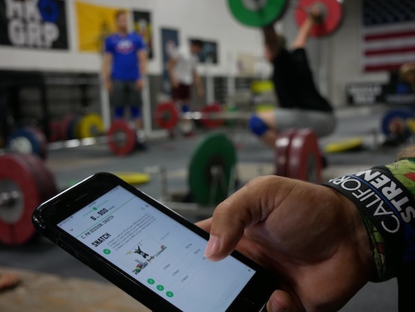 ONLINE PROGRAMMING - Learn more about Olympic weightlifting, Functional Training and Sport Specific Online Programs.