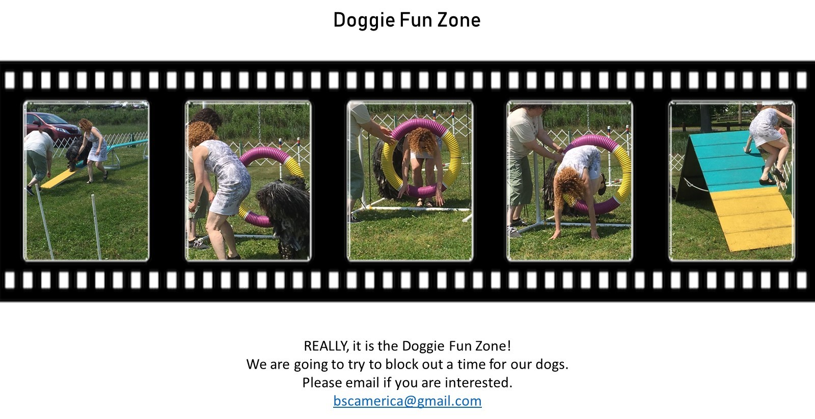 Doggie Fun Zone - Click Here for Details