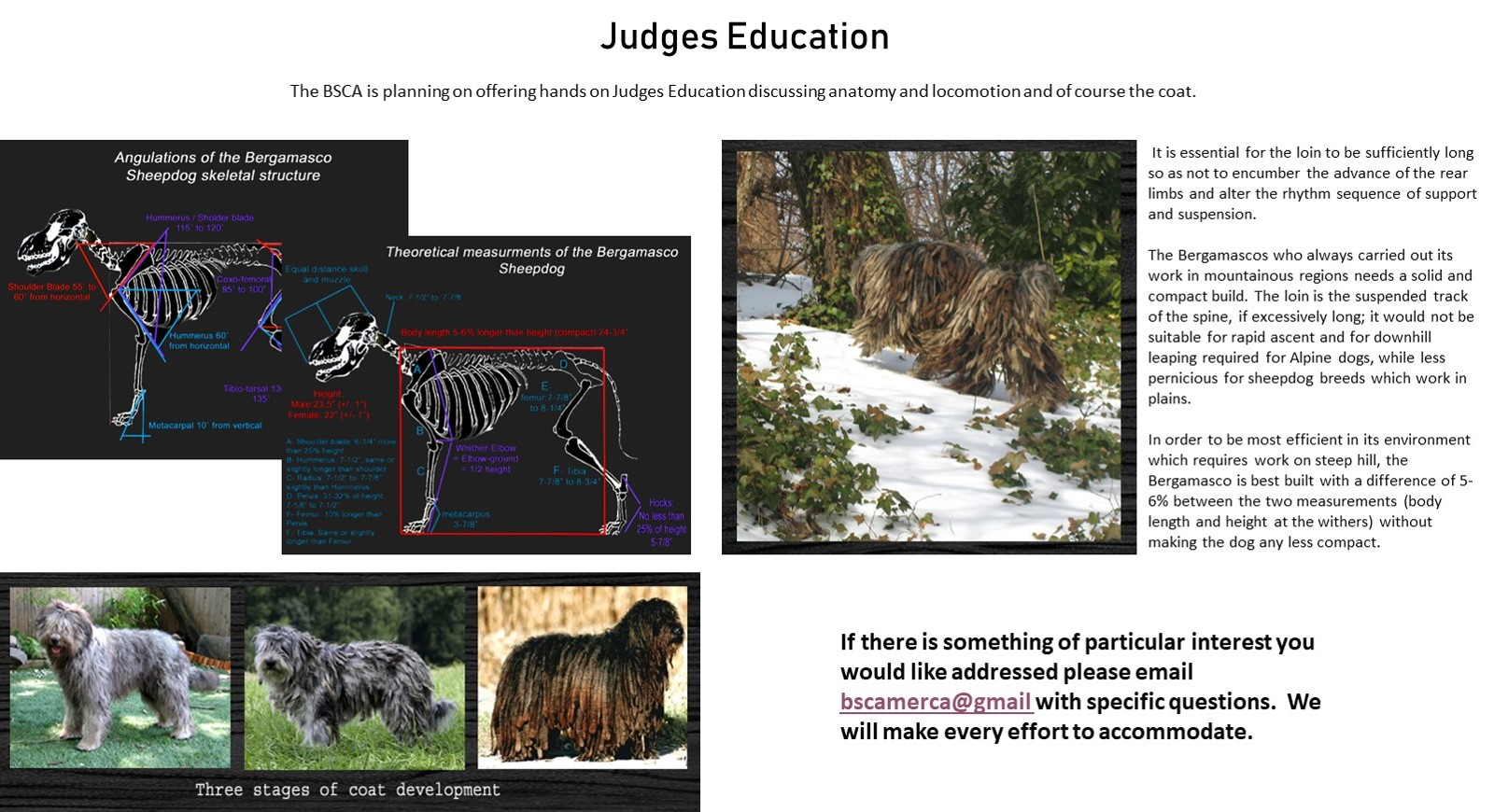Judges Education - Click Here for Details