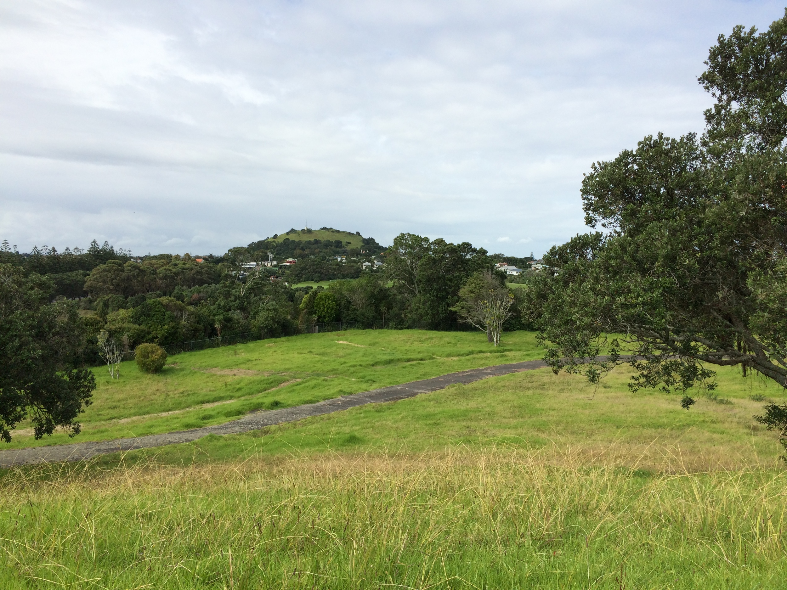 Wakakura Crescent looking to Mt Victoria -Takarunga