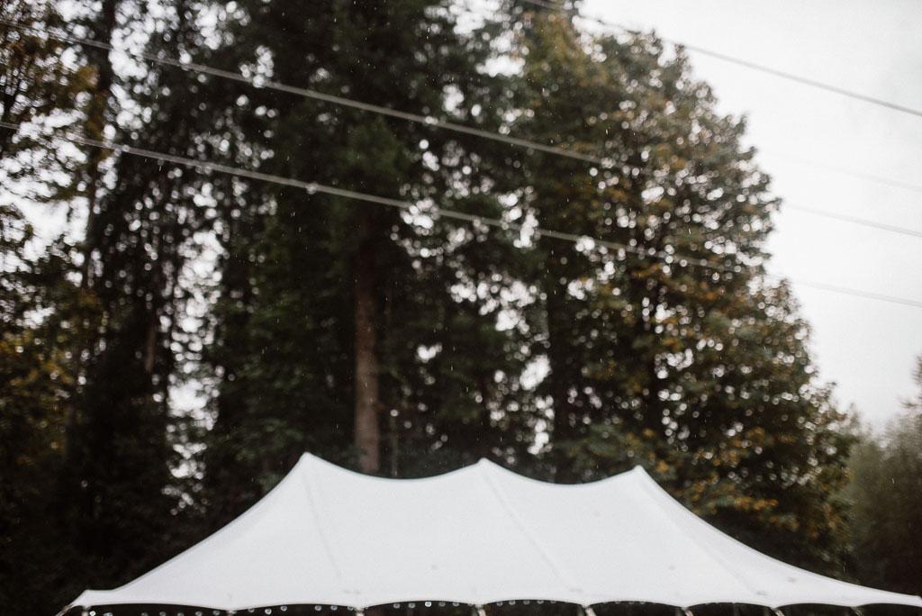 Intimate wedding seattle125.jpg
