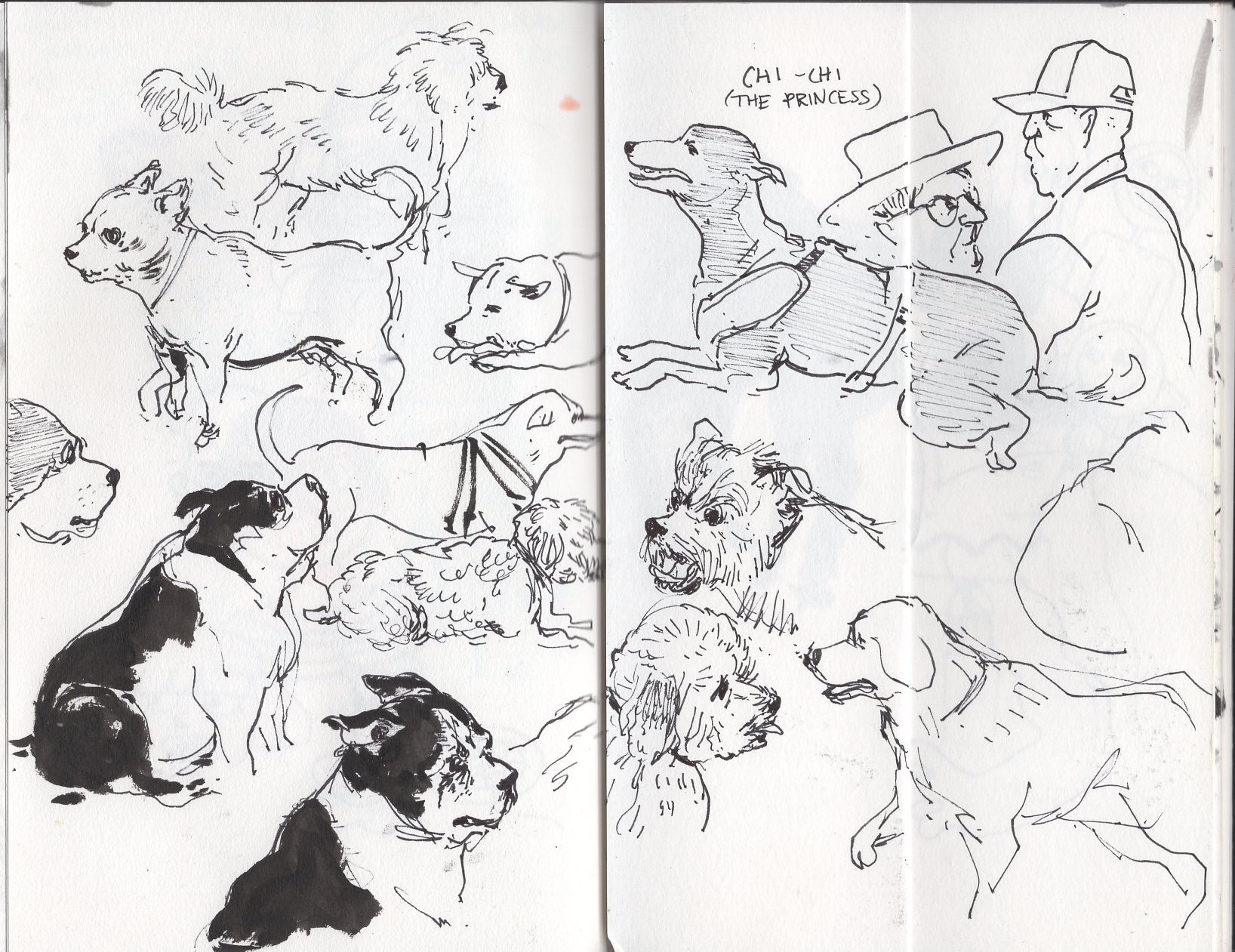 sketchbook053.jpg