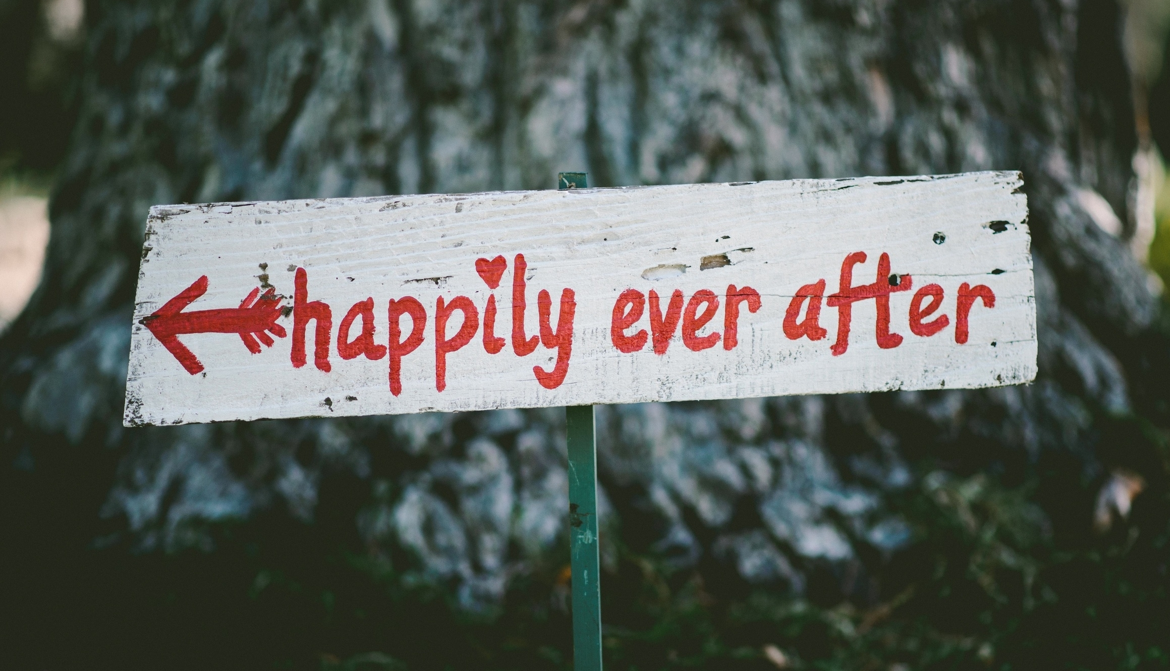 "That ""happily ever after"" sign is just a play on your emotions.    It's meant to elicit the feeling that you can create a beautiful website that makes you happy forever, and that's where the website design story ends: happily ever after.    Do you really think that's possible?     Read more.."