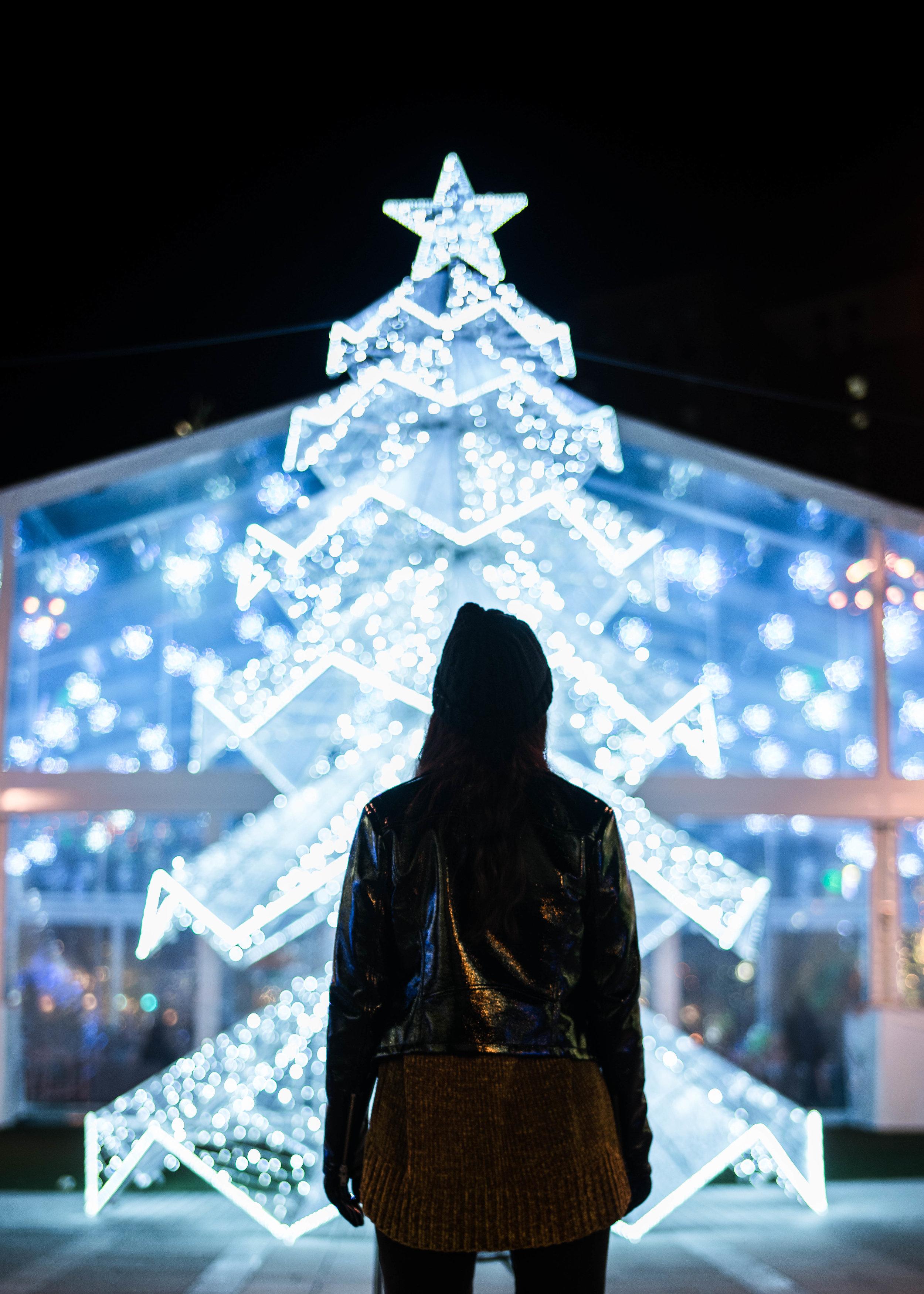 christmas tree | detroit | wonder | detroit photoshoot | holiday photo | holiday photoshoot | winter wonderland photo | christmas light photo | holiday bokeh | holiday mini session | christmas in detroit | kboothmedia