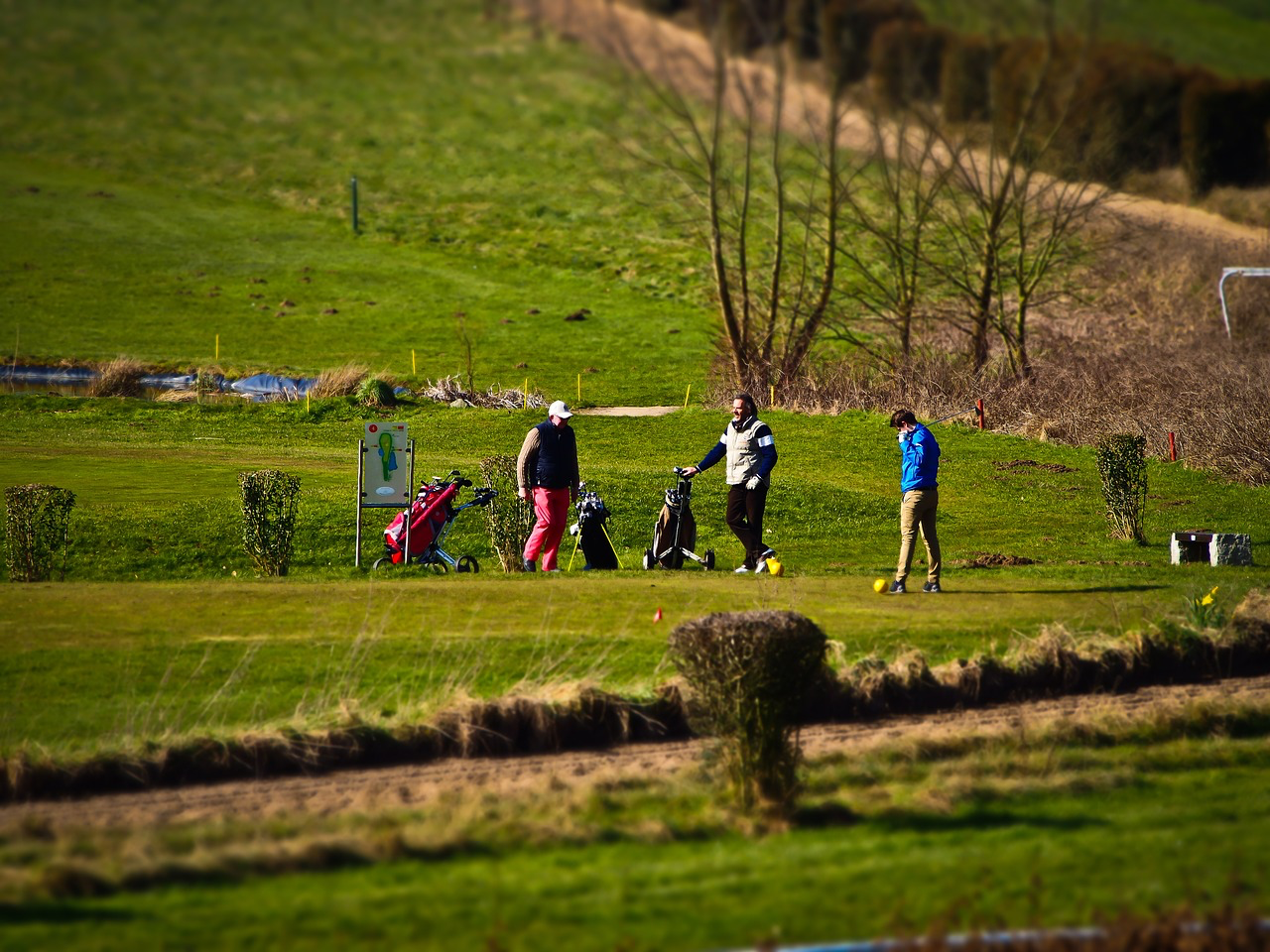 Get on out there and enjoy some golfing with friends.