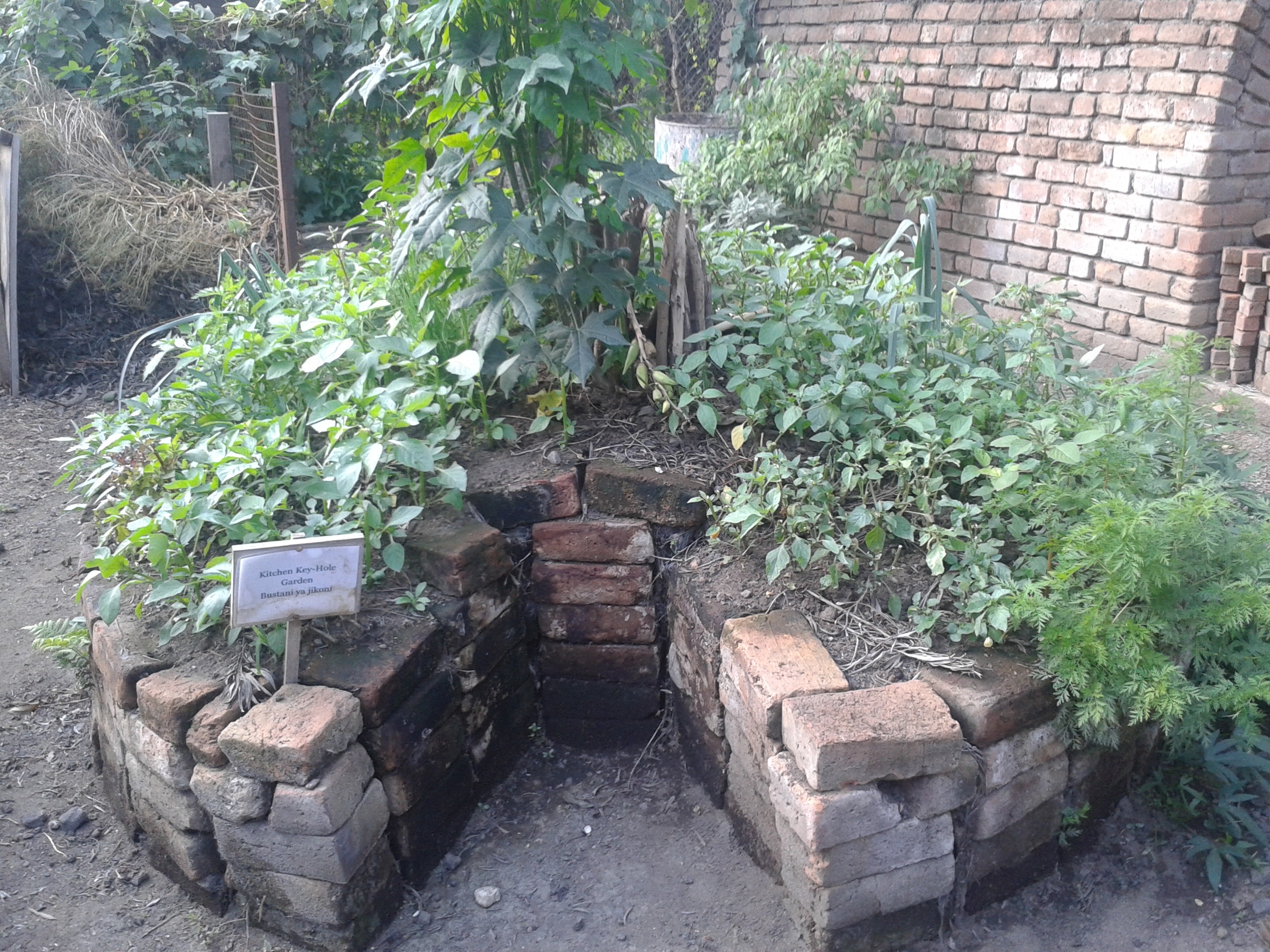 Kitchen Garden 2.jpg
