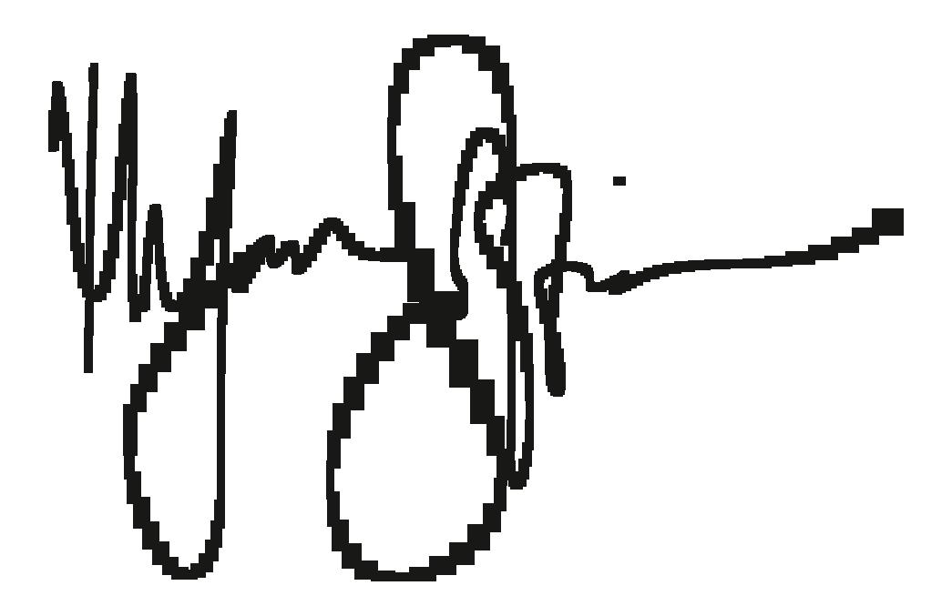 SIGN INK.png