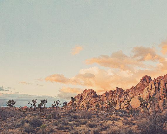 Winter in the Desert No.2