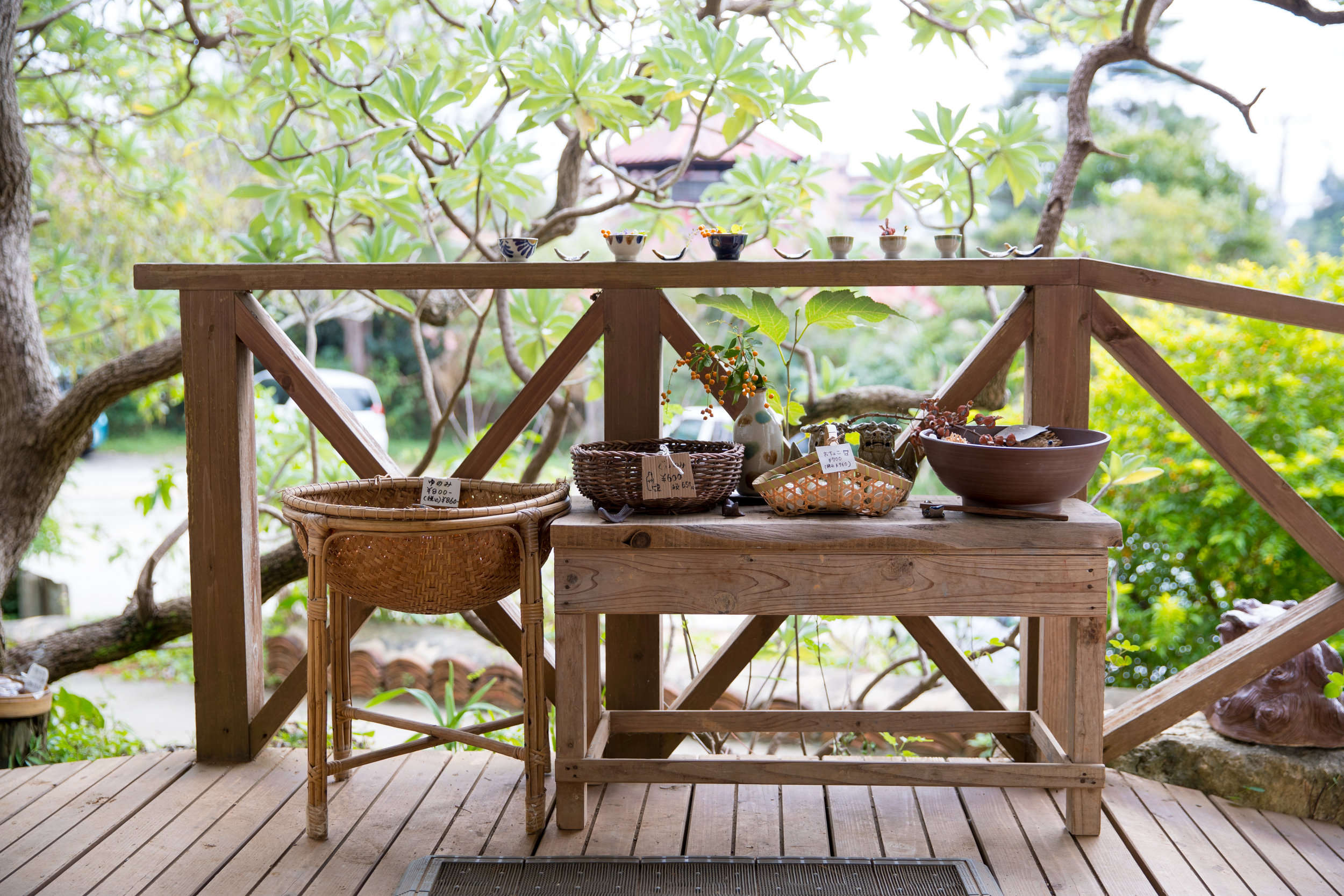 deck patio wood plants spring.jpeg