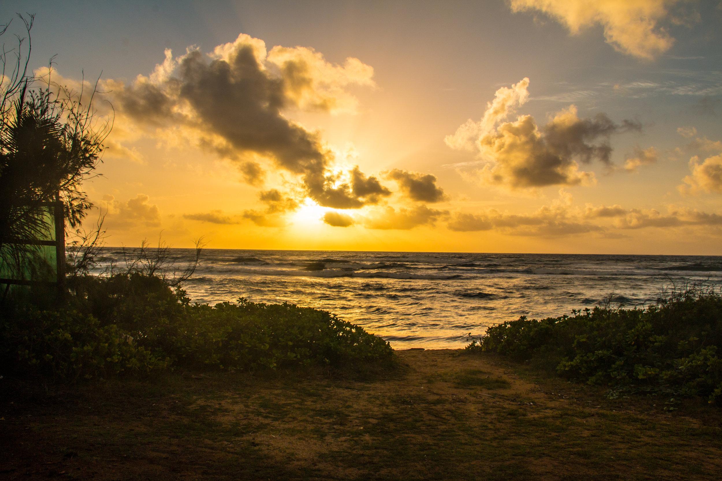 Kauai 2016-63.jpg
