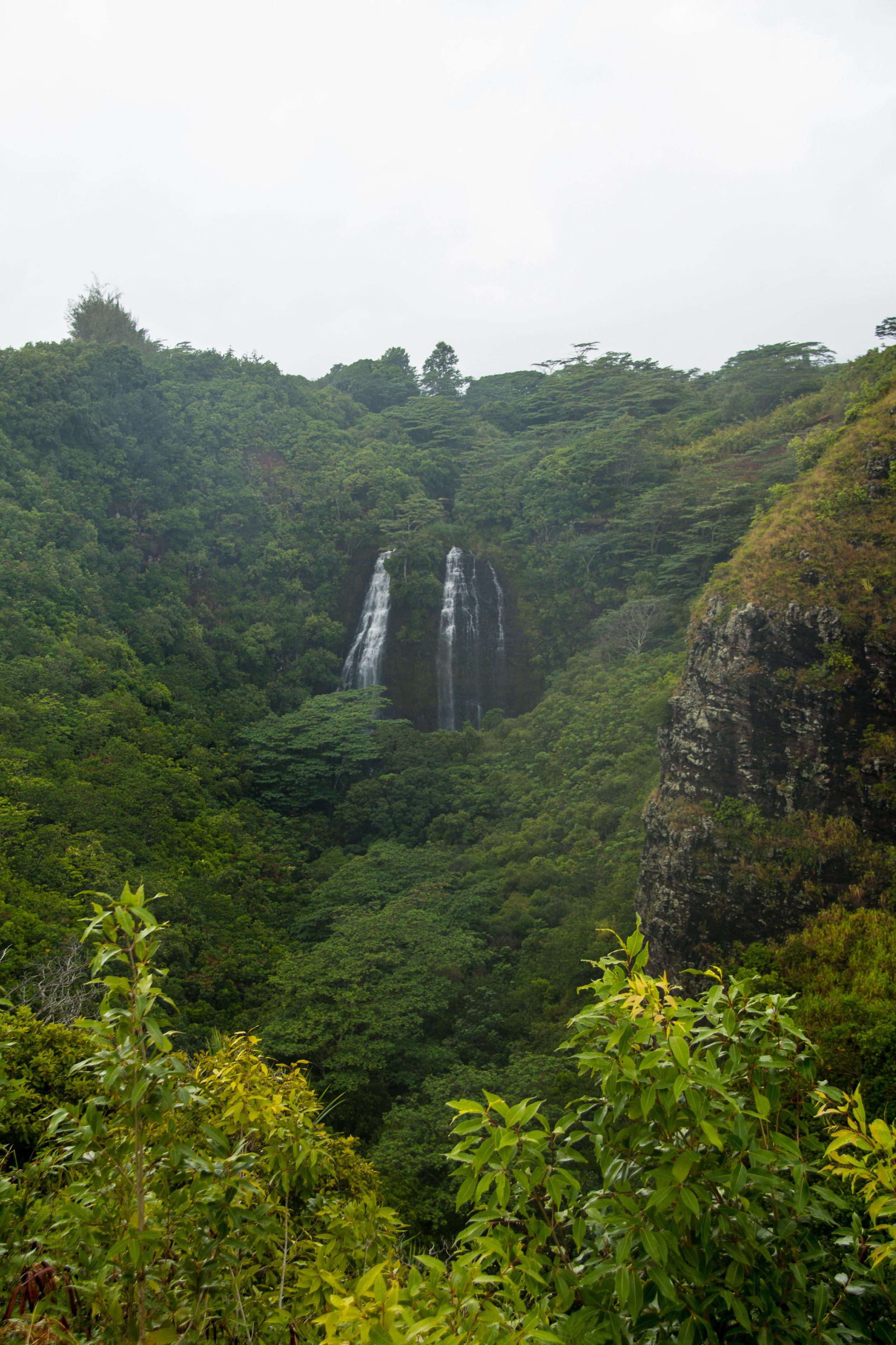 Kauai 2016-38.jpg