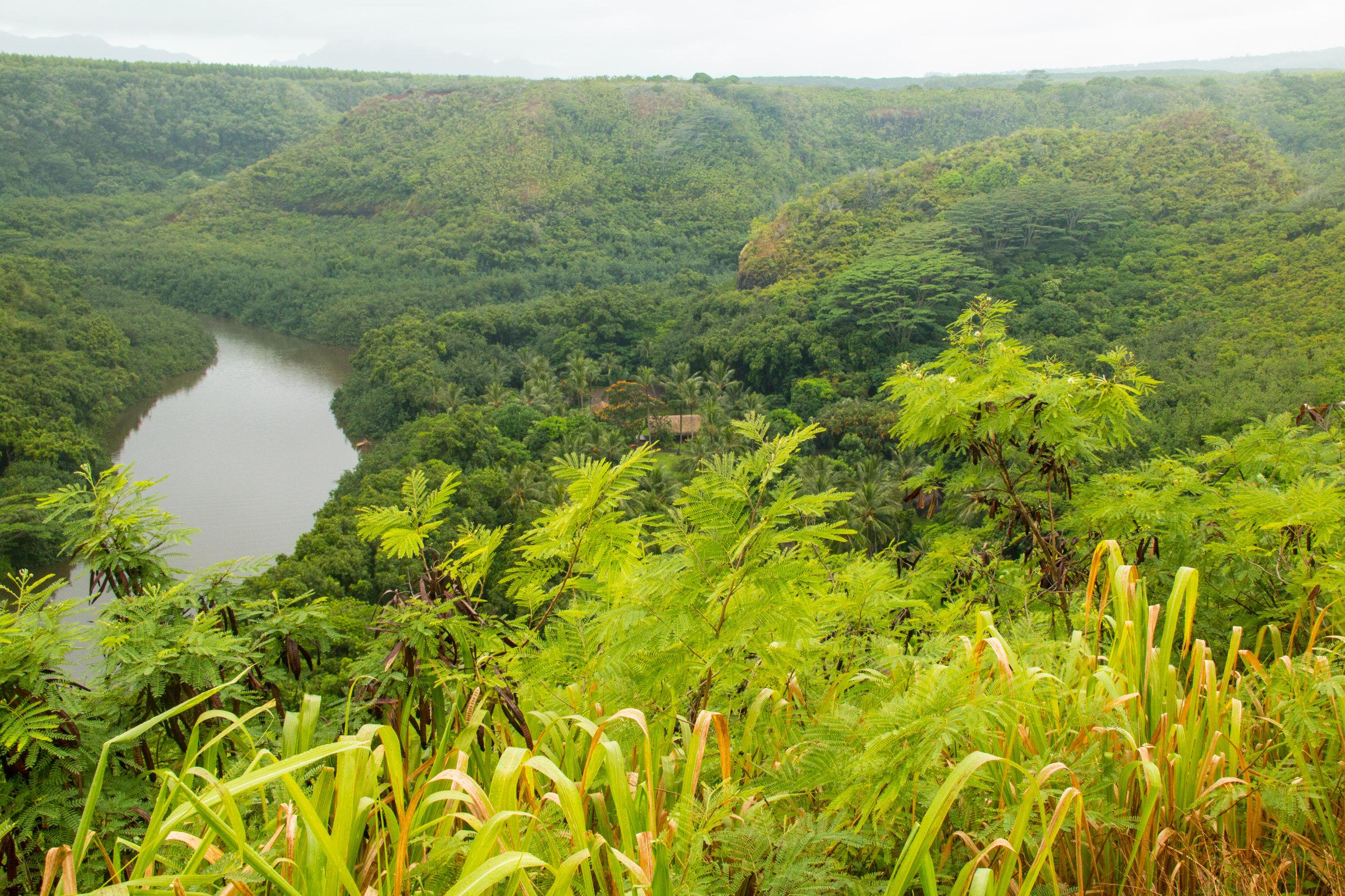 Kauai 2016-42.jpg