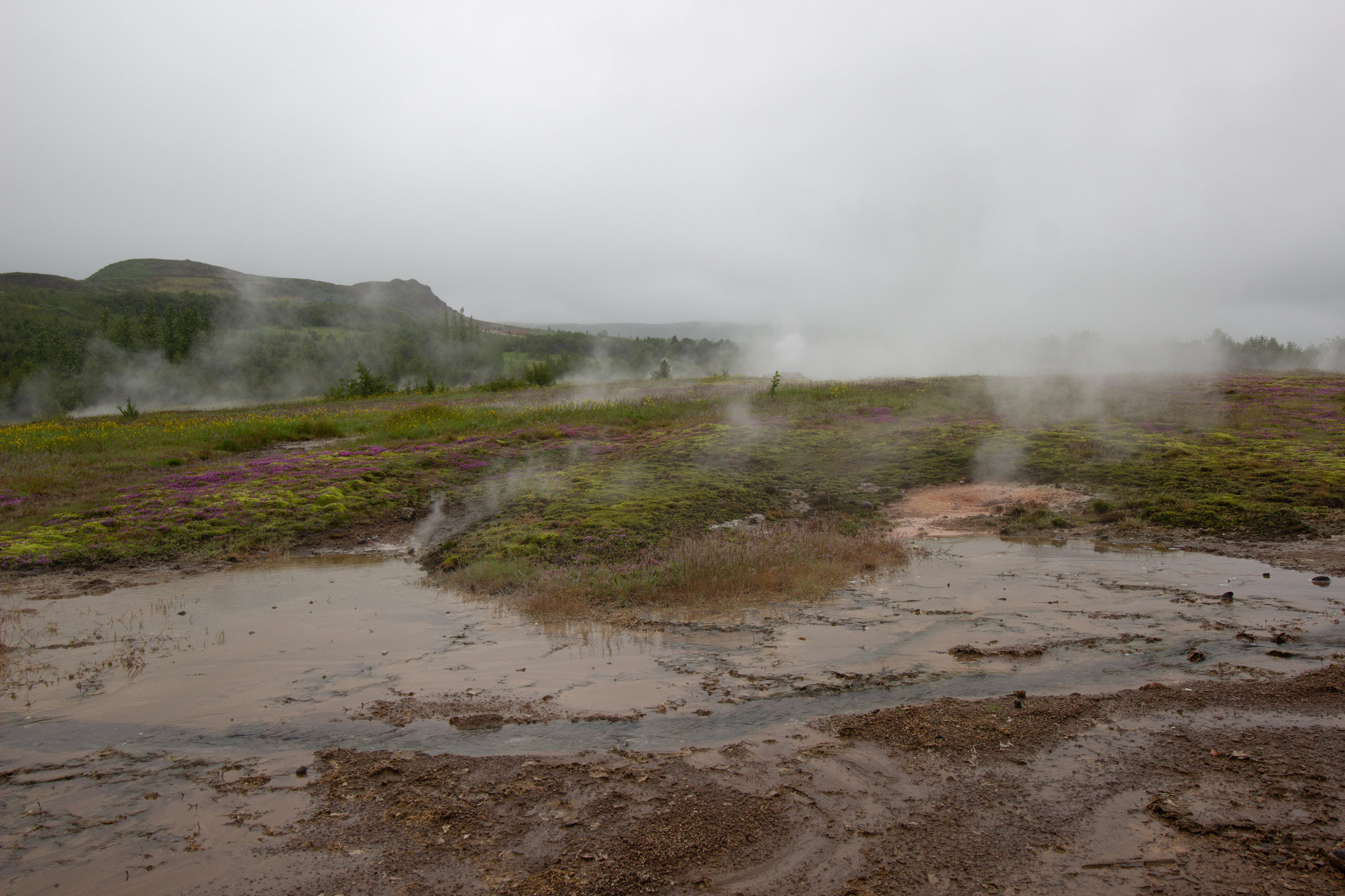 Iceland SS.goup 2-30.jpg
