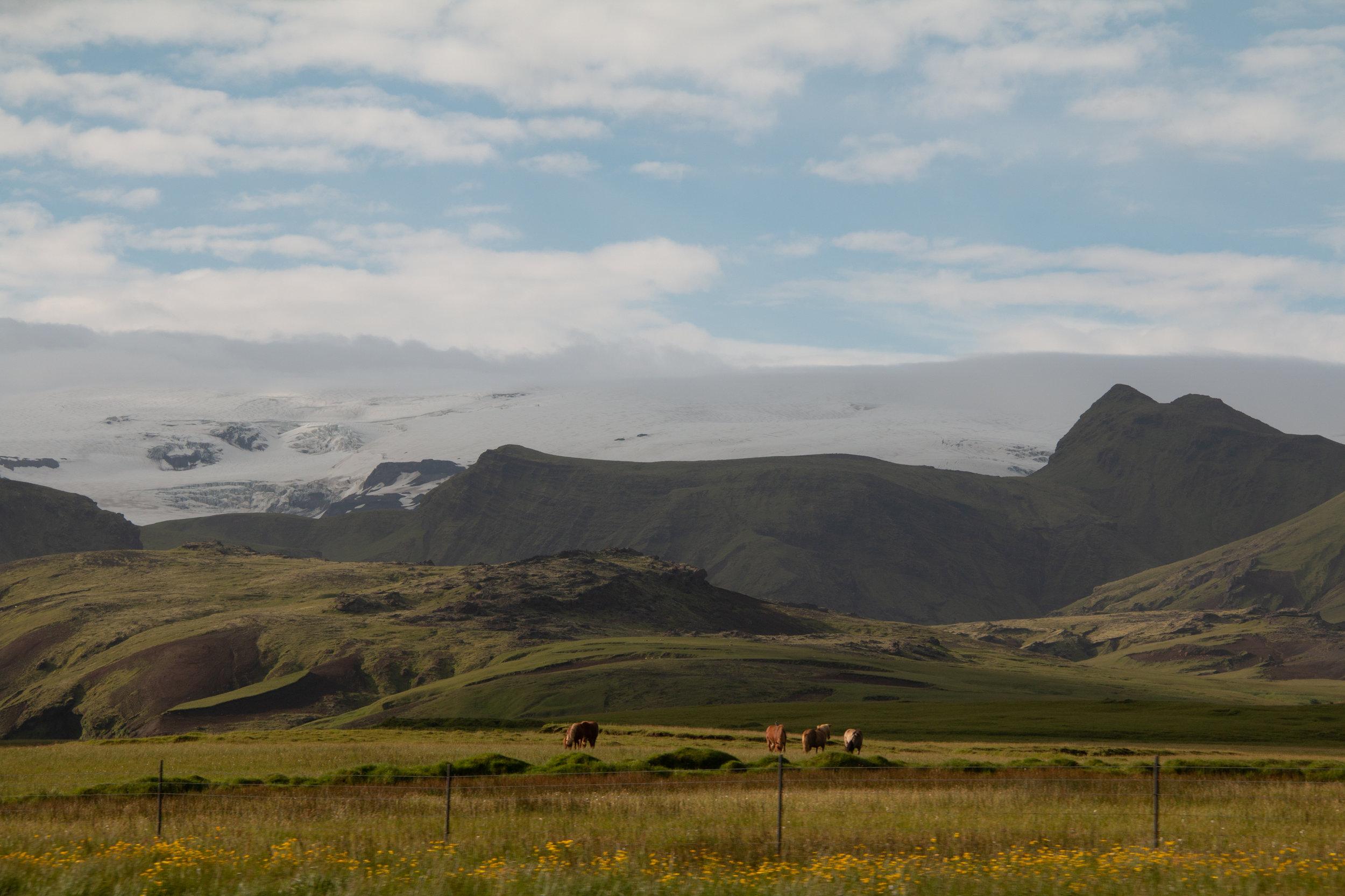 Iceland SS-82.jpg