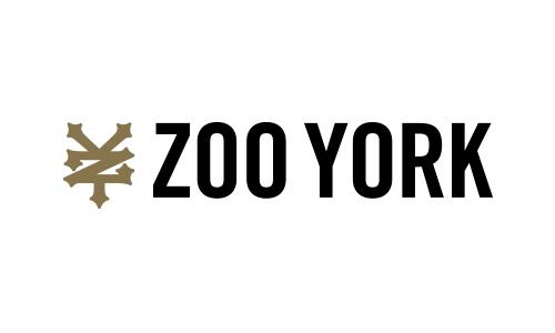 ZY_logo_web.jpg