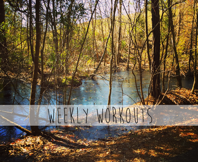 weeklyworkouts-feb15-22.png