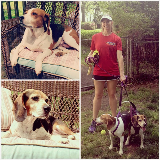 My running buddies - pic on the right taken in spring 2013