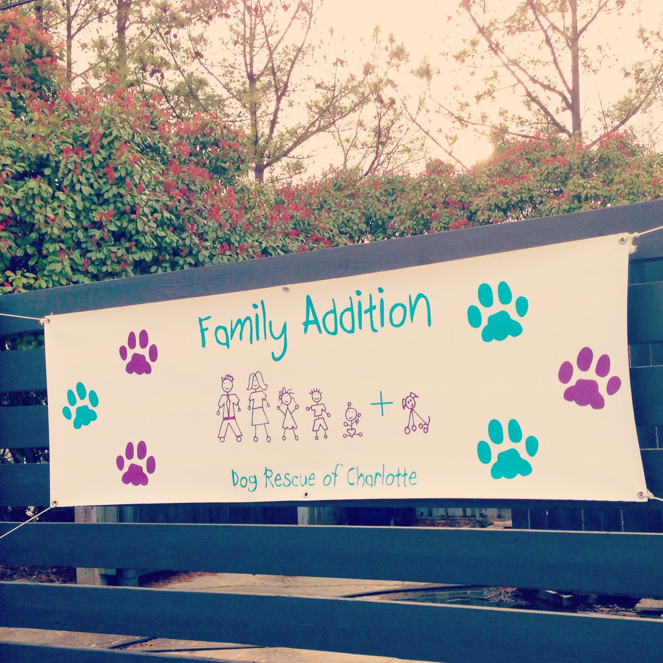 Family addition Banner