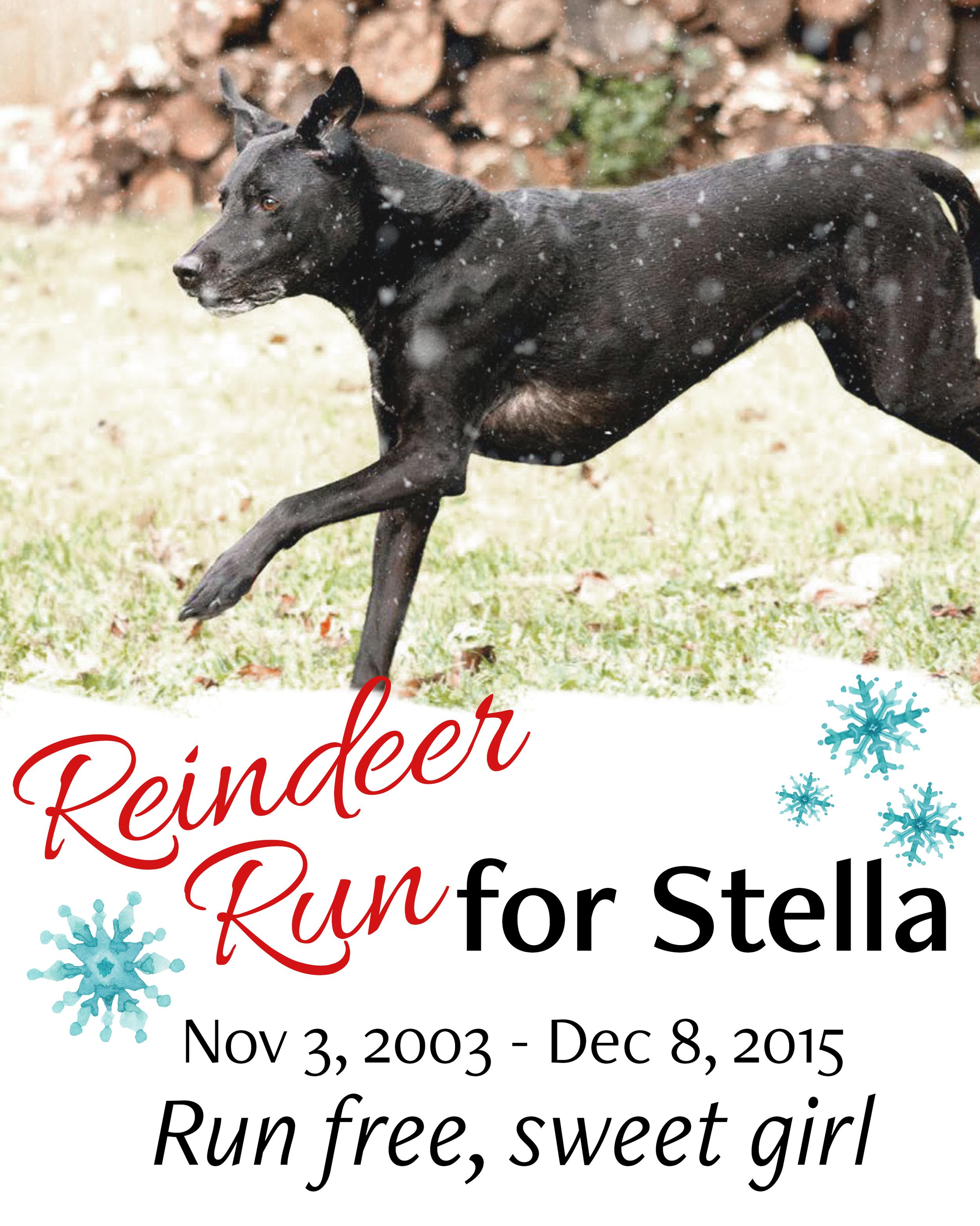 run-for-stella-bib