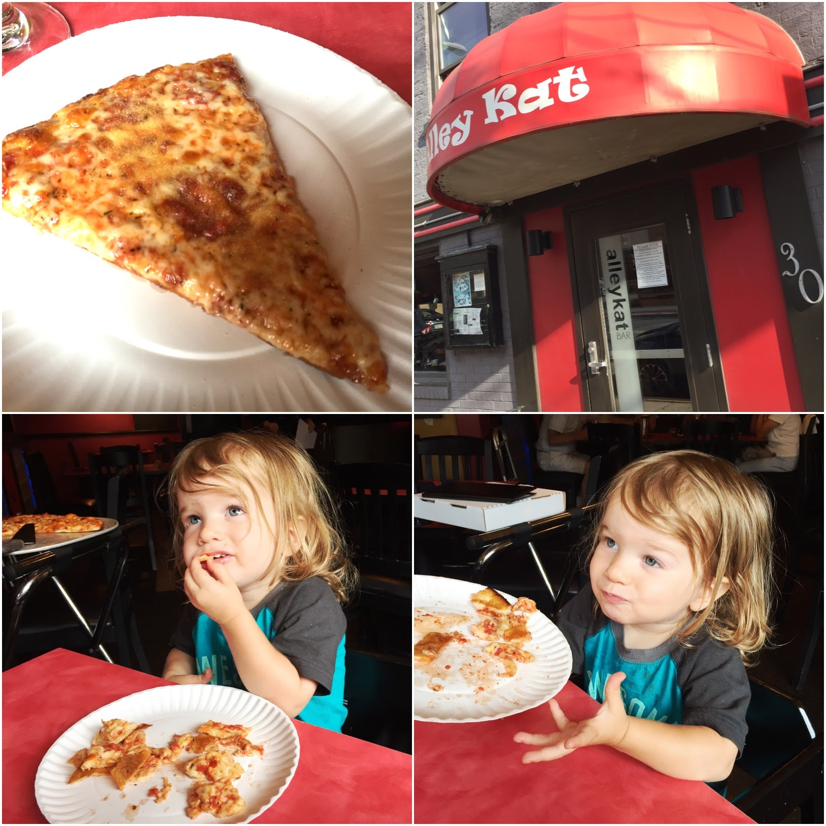 alley-kat-pizza