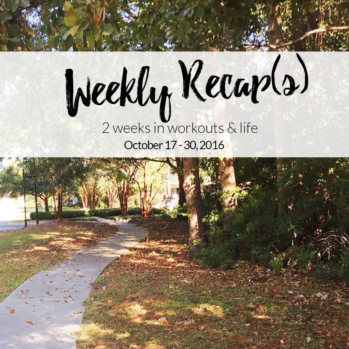 weekly recap - fall running path